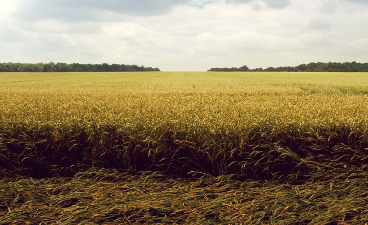 能源、化肥、田间、耐磨