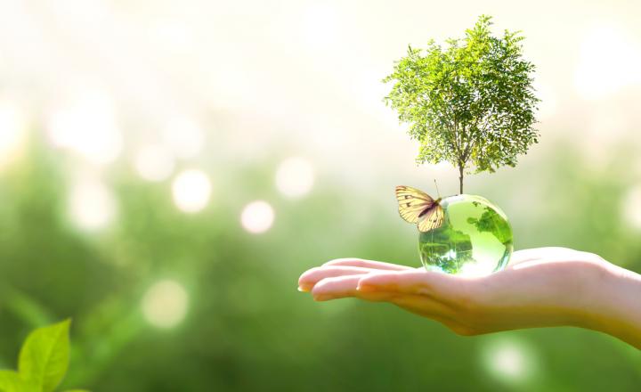 环境、空气、自然、水、过滤、行星、地球