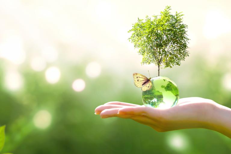 Environnement, air, nature, eau, filtration, planète, terre